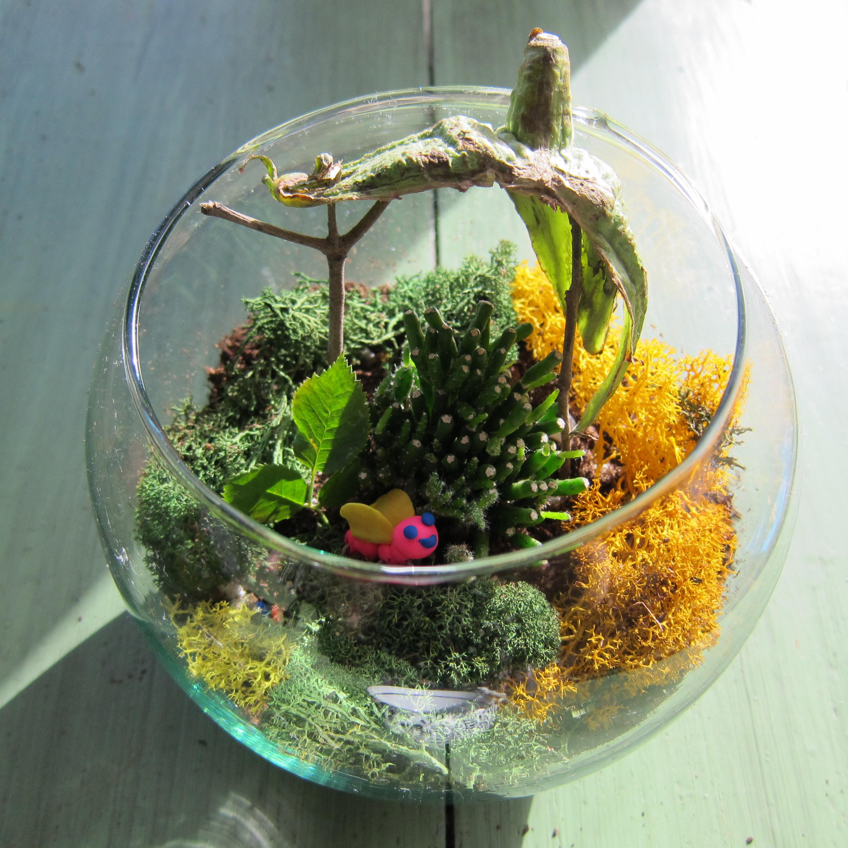 Make A Terrarium PreK 5th Grade Art Curricula